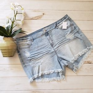 Size 20 Charlotte Russe shorts
